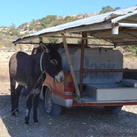 Mobile shelter